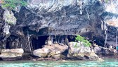Đảo yến Phương Mai hoang sơ và quyến rũ