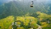 Vẻ đẹp thơ mộng của thung lũng Mường Hoa mùa lúa chín