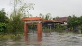 Quảng Bình: Thiệt hại quá lớn, đề nghị Trung ương cứu trợ khẩn cấp