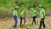 Amway Việt Nam làm sạch bãi biển Cần Giờ