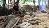 Sau lũ, gỗ mục, rác trôi về tấp kín vườn nhà dân