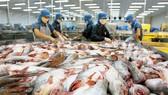 4 thị trường xuất khẩu đạt hơn 10 tỷ USD của Việt Nam