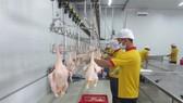 Mở rộng truy xuất nguồn gốc thịt và trứng gia cầm
