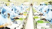Công ty Yến sào Khánh Hòa: 2 tháng, doanh thu đạt gần 1.000 tỷ đồng