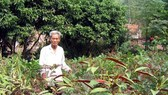 Herbalist Community sets Humanitarian Example