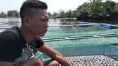 Nhiều bè cá lồng chết không rõ nguyên nhân tại Quảng Nam