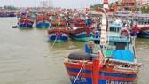 Đánh bắt xa bờ đem lại thu nhập lớn cho xã biển Bảo Ninh