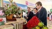 Các doanh nghiệp nước ngoài tìm hiểu về thế mạnh nông nghiệp của Đồng Tháp để đầu tư. Ảnh: NGỌC DÂN