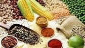 Giá lương thực lên cao nhất trong 10 tháng