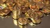 Không cho phép giao dịch bằng tiền Bitcoin
