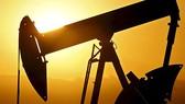 5 phiên tăng liên tiếp, dầu lên sát 97USD/thùng