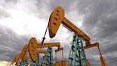 Giá dầu tăng trở lại sau 4 ngày