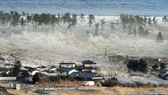2011 bảo hiểm thiên tai toàn cầu 105 tỷ USD