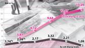 Lạm phát năm 2011 sẽ khoảng 17-18%