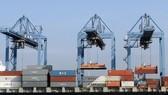 Xuất khẩu tiếp tục thuận lợi về giá và thị trường