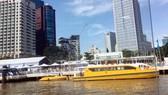 Giao thông công cộng bằng đường thủy hay gọi là buýt sông