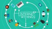 Các thiết bị IoT là mục tiêu của các cuộc tấn công mạng