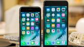 iPhone 7, 7Plus được yêu thích bởi chất lượng cao, mức giá rẻ