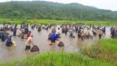 Độc đáo Lễ hội đánh cá Đồng Hoa