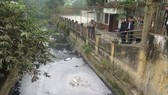 Wastewater from some firms has contaminated Hung Yen's river and canal systems