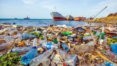 Transporting waste from Con Dao to mainland costs US$ 1.5 million