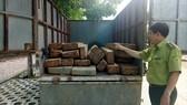 Chở gỗ lậu, tài xế để lại xe bỏ trốn