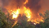 Thời tiết nắng nóng kéo dài, cẩn thận khi đốt thực bì, củi lửa trong rừng