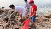 Ca sĩ Tuấn Hưng tham gia dọn sạch biển với người dân đảo Lý Sơn (Quảng Ngãi)