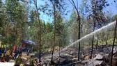 Quảng Ngãi: Diễn tập xử lý các tình huống cháy rừng