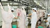 Quy hoạch 8 nhà máy giết mổ công nghiệp