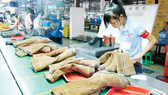 Mở rộng xuất khẩu da giày sang thị trường châu Âu