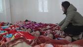 Hà Nội: Sơ tán gần 500 học sinh mầm non vì khí lạ