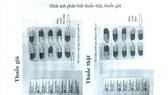 Khẩn trương làm rõ nguồn gốc thuốc Lincomycin giả