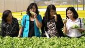 Xây dựng Luật Trồng trọt để tháo gỡ khó khăn cho nông nghiệp