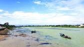 Sông Thạch Hãn, Quảng Trị. Ảnh: KHẮC HÀO