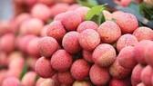 Ngành công nghiệp chế biến nông sản, thực phẩm Việt Nam có nhiều cơ hội phát triển mạnh mẽ