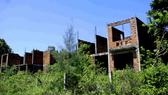 Khu nhà ở công nhân viên Nhà máy Đóng tàu Dung Quất bị bỏ hoang