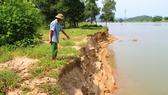 Nhiều diện tích đất ở bãi Soi, xã Tùng Ảnh, huyện Đức Thọ, tỉnh Hà Tĩnh đã bị cuốn sập, sạt lở nghiêm trọng