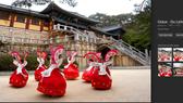 Hình ảnh tour du lịch Hàn Quốc của Công ty TNHH Thương mại Dịch vụ Quảng cáo Golux trên mạng