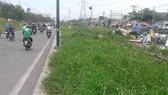 Vỉa hè thành bãi cỏ hoang