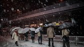 圖為民眾在東京秋葉原地鐵站外等待出租車。(圖源:AFP)