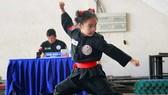 傳統武術已納入學校教程。
