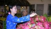 九龍江平原火龍果大豐收且價位較高,農民振奮不已。
