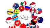 APEC 關注支持和完善多邊貿易體系。(示意圖源:互聯網)