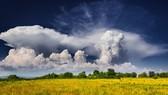 世界氣象組織表示,今年六七月份,北半球經歷了大規模降雨和持續高溫等極端天氣。(圖源:世界氣象組織)