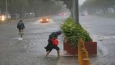 菲律賓民眾頂著狂風暴雨出行。(圖源:AP)