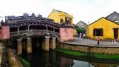 會安廊橋下的河涌水體污染嚴重,黑臭不堪。(圖源:互聯網)