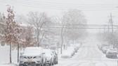 紐約市皇后區一處街道白雪皚皚。(圖源:互聯網)