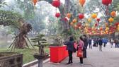 遊客在展區觀賞盆景。(圖源:XC)