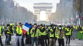 """法國""""黃背心""""抗議者""""佔領""""巴黎香榭麗舍大街。(圖源:AFP)"""